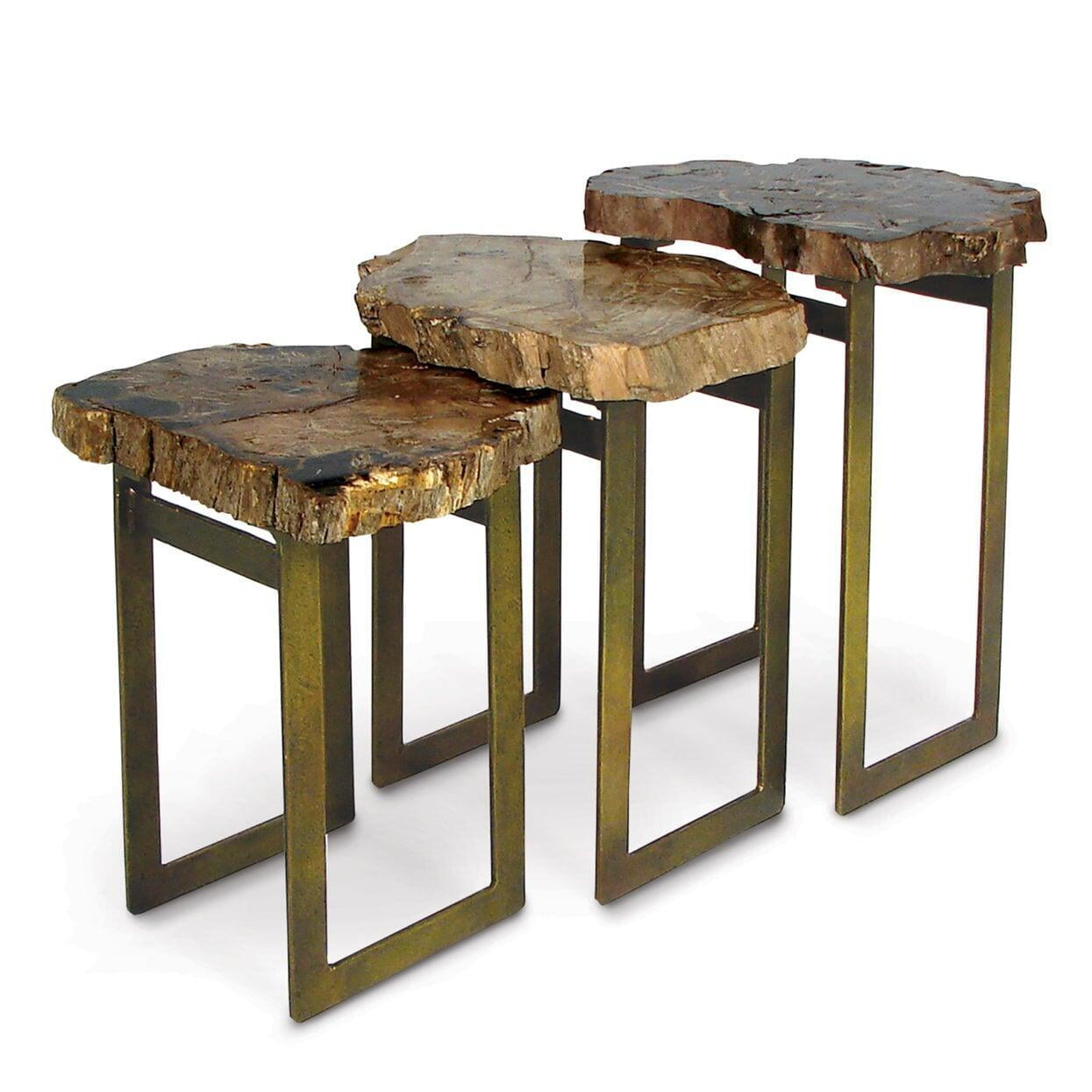 Amazing Petrified Wood Casa Arte Decor Gmtry Best Dining Table And Chair Ideas Images Gmtryco